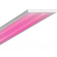 Светодиодный светильник Geniled ЛПО Agro 60W IP54 Микропризма