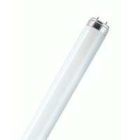 Лампа люм. 18 Вт d=26mm G13 L=600mm 2700К цвет лампы накаливания