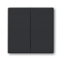 Клавиша для 2-х клавишных выключателей и кнопок антрацит solo/future