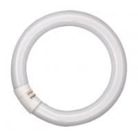 Лампа люм. кольцевая 32 Вт G10q, d=26mm D=307mm, улучш. 2700К тёплый