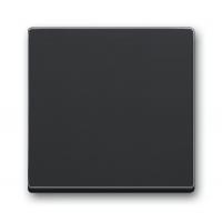 Клавиша для выключателей/переключателей и кнопок антрацит solo/future