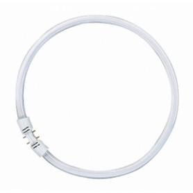 Лампа люм. кольцевая T5 55 Вт, 2GX13 d=16mm D=305mm, тёплый