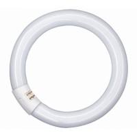 Лампа люм. кольцевая 40 Вт G10q, d=26mm D=409mm, улучш. 4000К холодный