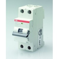 Автомат. выкл. дифф. тока 2-пол. 25A 30мA тип AC300 6kA хар-ка C серия DS201